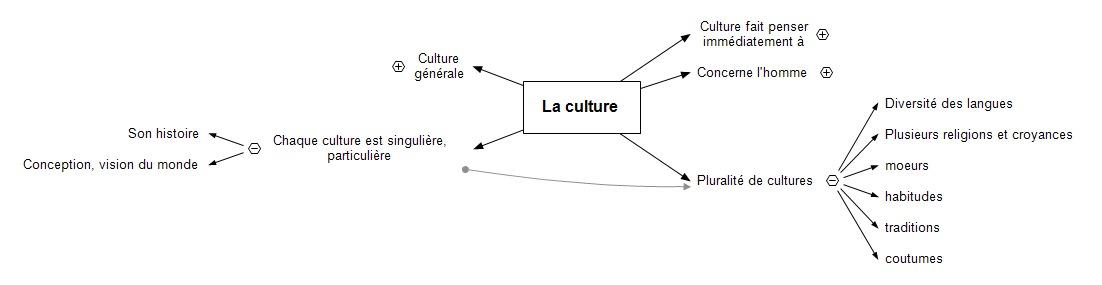 La culture ts3